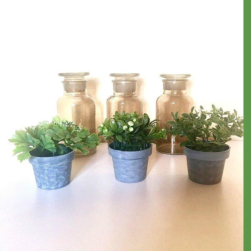 02 plantes