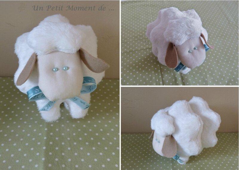 Mouton aux yeux bleus