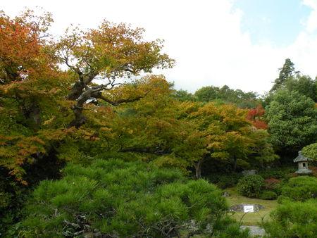 Japon_Kyoto_2009_2108
