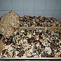 Outils pour champignons