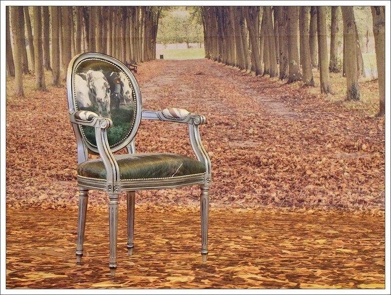 salon photo 112013 fauteuil automne