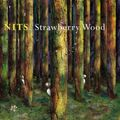 The nits - strawberry wood - 2009