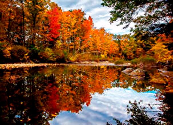 """Résultat de recherche d'images pour """"paysage d'automne"""""""