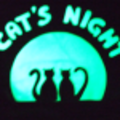 cat's night - nuit