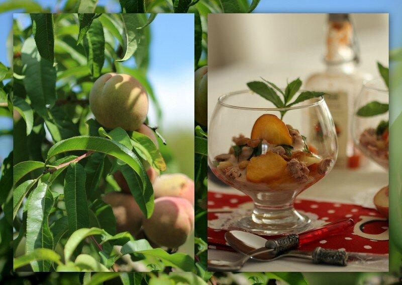 verrine thon peche et verrine citron