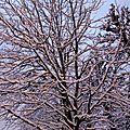 Neige à paris 4