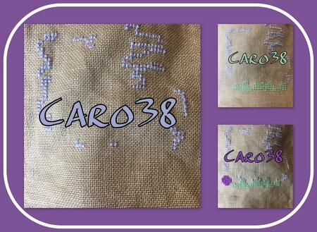 caro38_salmai21_col1