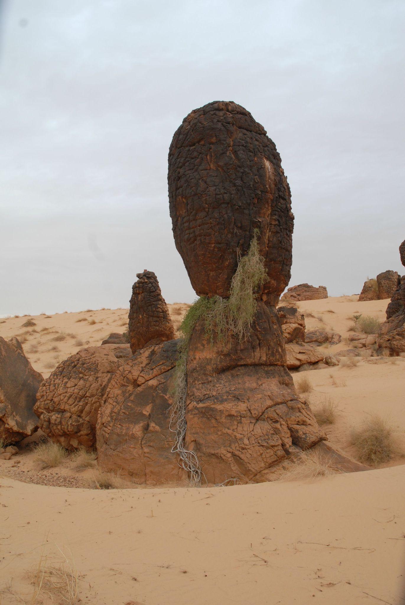 mauritanie et mali 2009 155