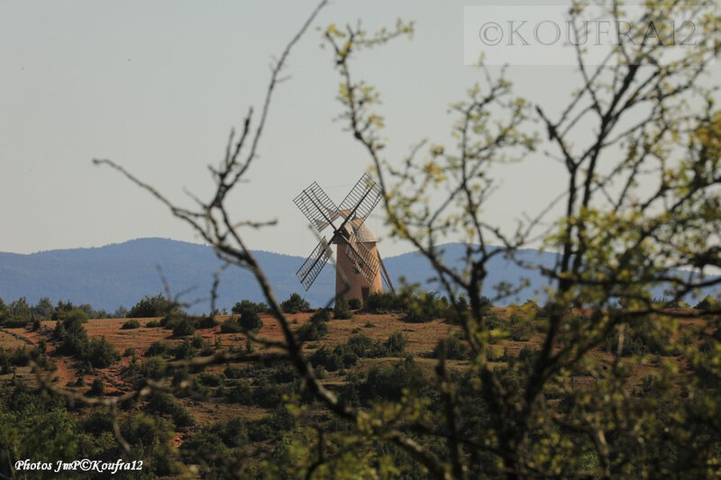Photos JMP©Koufra 12 - La Couvertoirade - Moulin - 02082019 - 0003