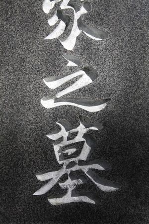 reduite_japon_1_nov_09151