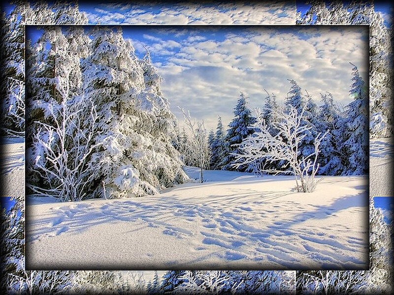 hiver relief