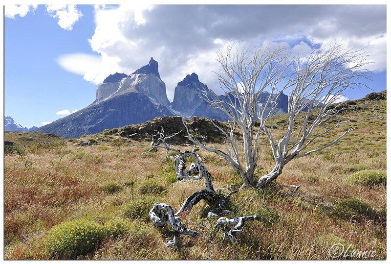 _Argentine_396_Chili_Torres_del_Paine