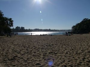Manly - Shelly Beach