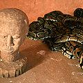 Serpent mystique de richesse chez papa kalamoko