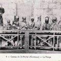 Basilique St Michel, les momies