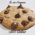 Plateaux gourmands: sos cookies