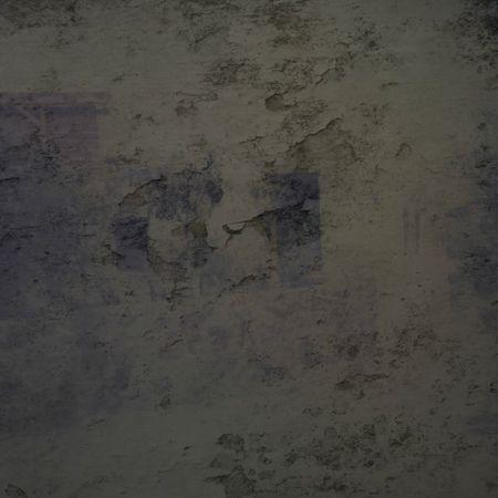 facade trace 1