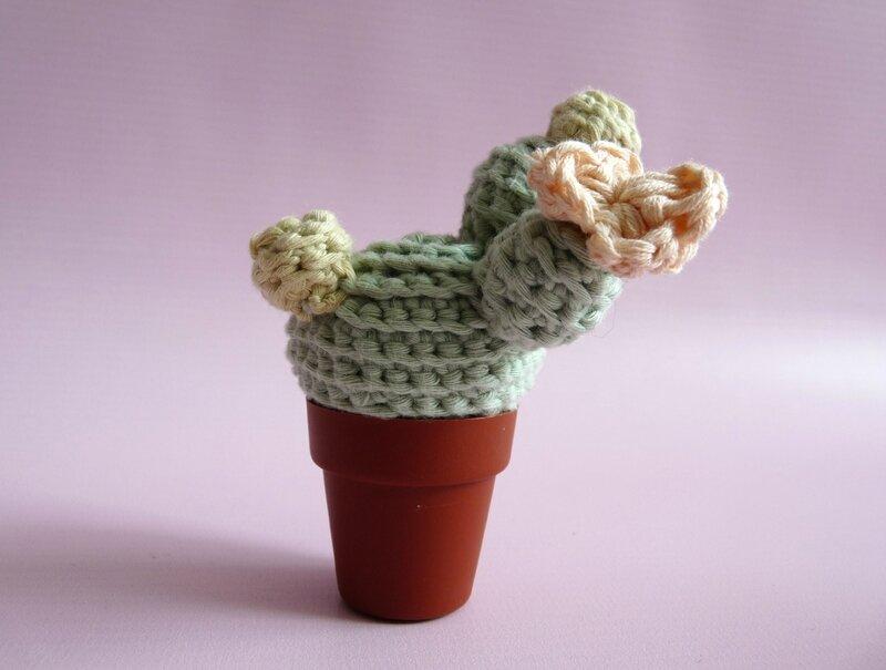 cactus crochet 06