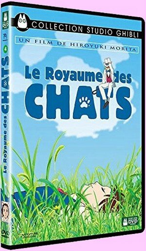 royaume chats