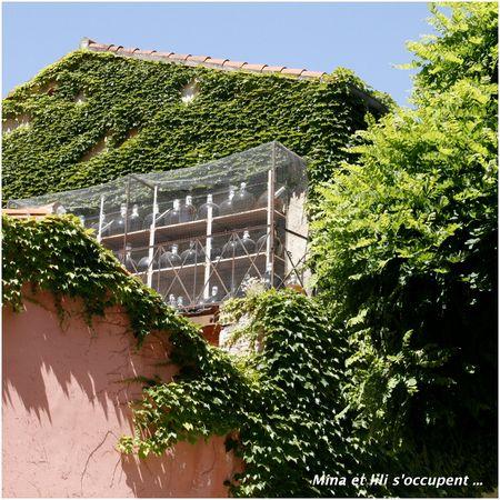 2011_05_Collioure_220