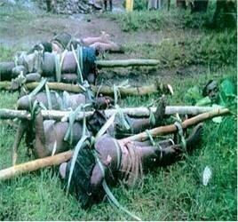 Genocide au Congo
