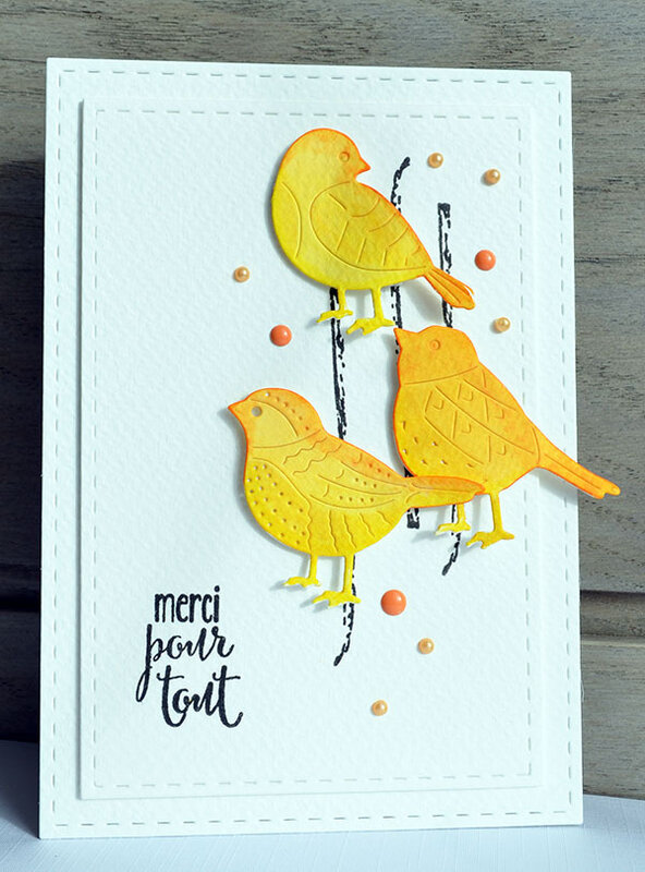 blogorel carte oiseaux lift