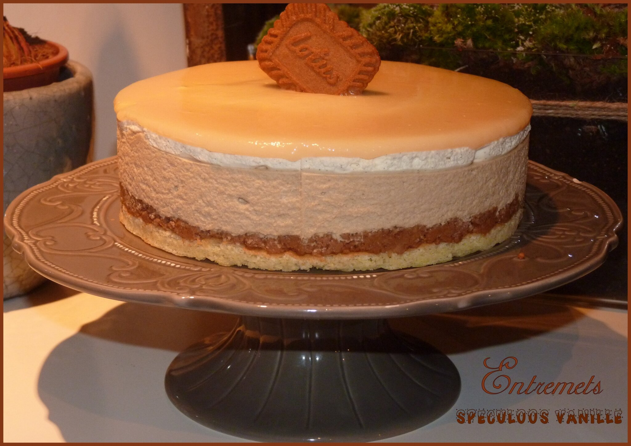 Enttremets speculoos vanille