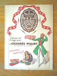 chicorée williot