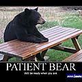 _funniest_pictures_everفيديو مرافق مضحك من عجائب العالم