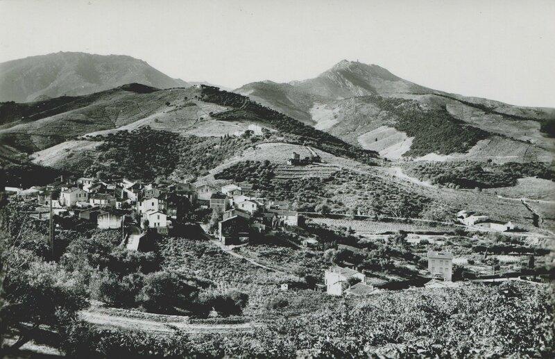 304 Le Puig Delmas et Mas Reig'
