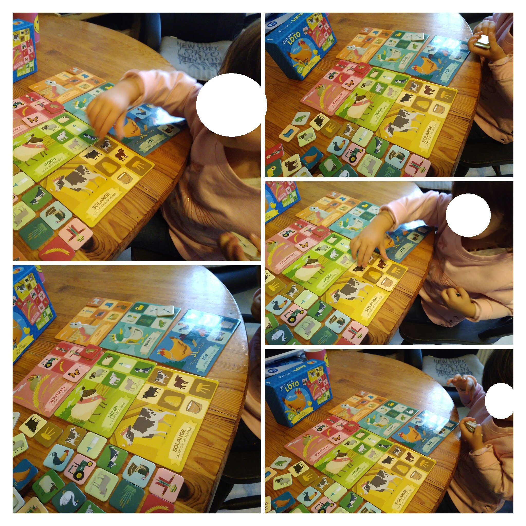 IMG_20190927_091621137-COLLAGE