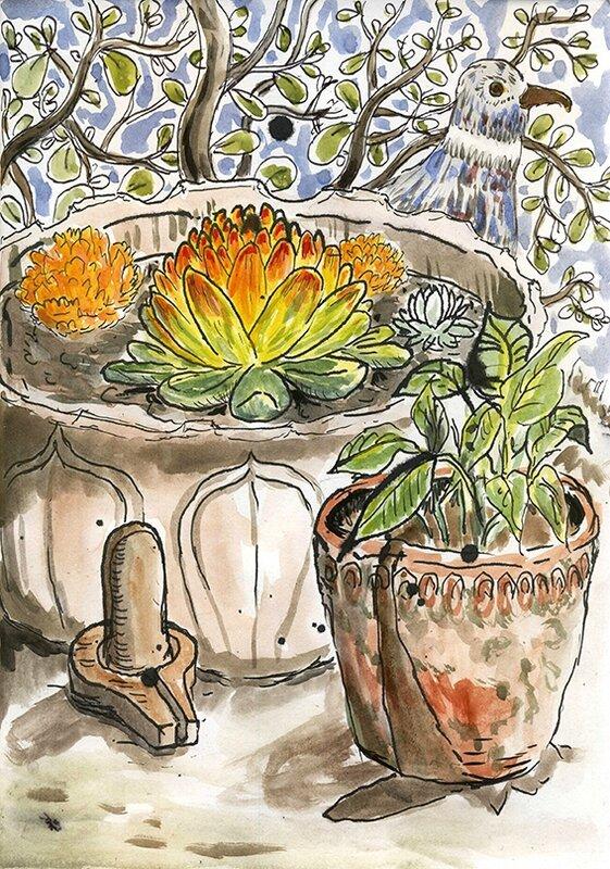 lotus ligam72