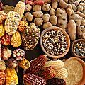 Réforme de la législation sur le commerce des semences.. bougeons-nous avant qu'il ne soit trop tard!