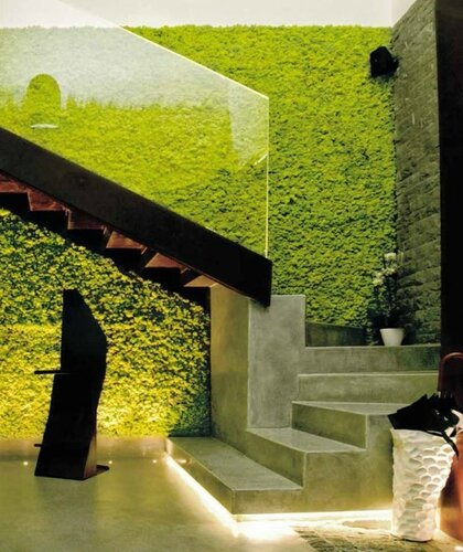 peaceful-indoor-living-wall-designs-for-any-home-10-554x659