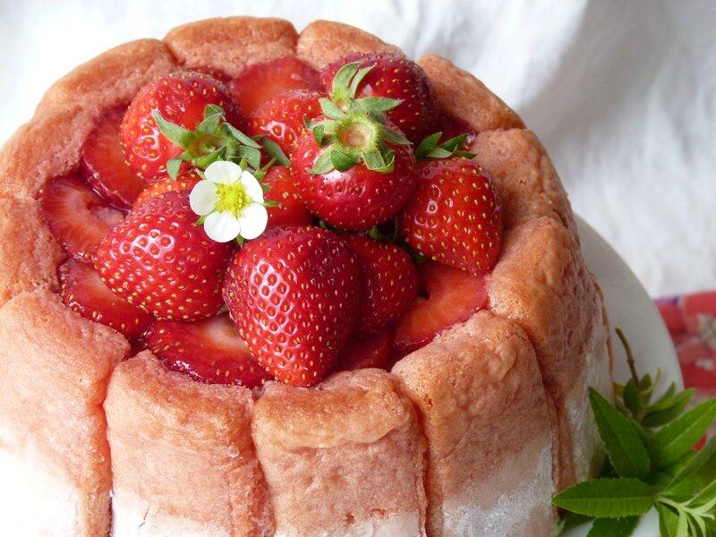 Charlotte fraise/rhubarbe aux épices