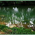 Arros Ricaud 030615