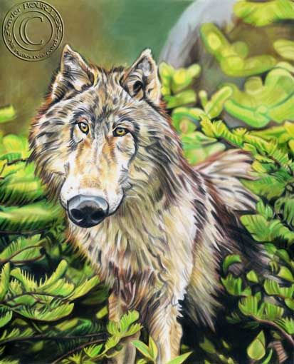 WOLF_LOUP_by_xavier_hourlier