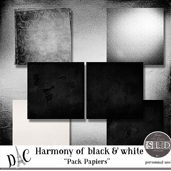 studiolaliedesigns_harmony_of_black_and_whitepv_papiers