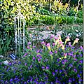 Windows-Live-Writer/Jardin_10232/DSCN0749_thumb