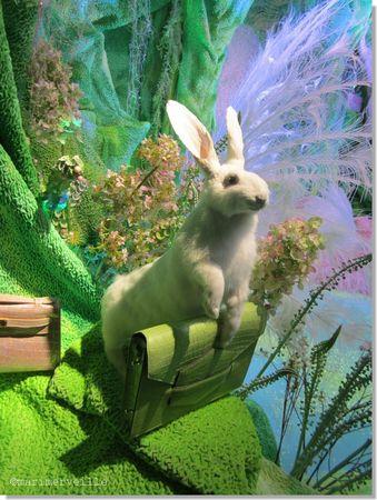 vitrine hermès lapin blanc