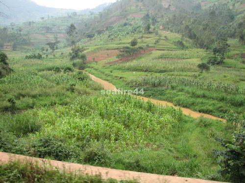rwanda_route ruhengeri kigali_027