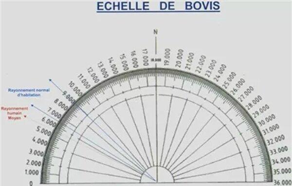 echelle-bovis