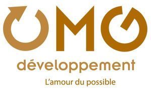 mg_dev_logo_big - Copie (2)