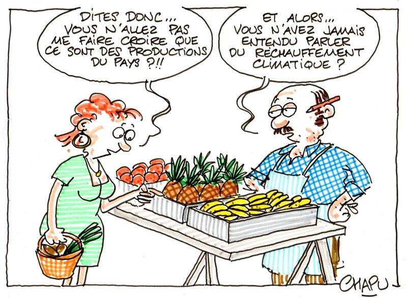 20-Terroir