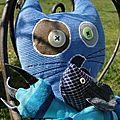 chat bleu détails