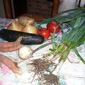 Soupe aux petits légumes revenus dans l'huile d'olive
