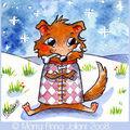 Le petit chien qui aime l'hiver...