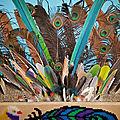 Collection de plumes