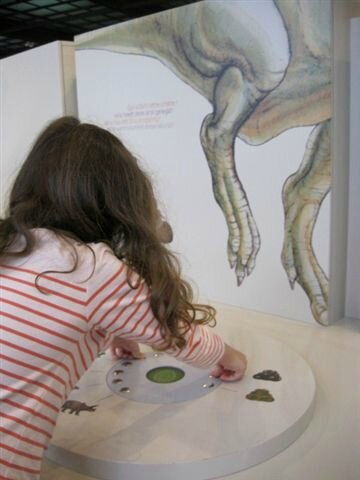 Muséum des Sciences naturelles ©Kid Friendly