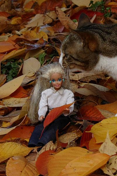 barbie5_3333